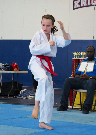 2013-10-13 TKD Nationals 222 web